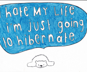 life, hibernate, and bear image