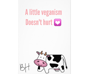 animals, cows, and vegetarian image