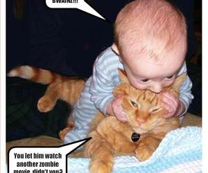 funny, baby, and cat image