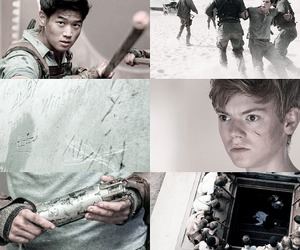 wicked and the maze runner image