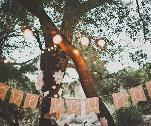 love, vintage, and tree image