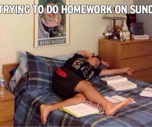 funny, me, and homework image