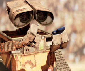 marry and walle image