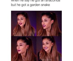 anaconda, funny, and true image