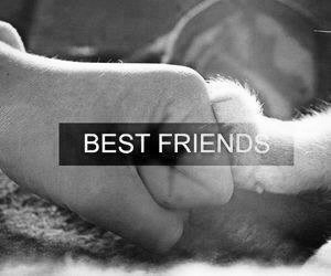 bff, friendly, and best friends image