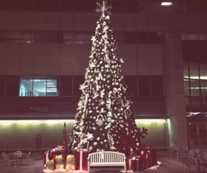 christmas, december, and new york image
