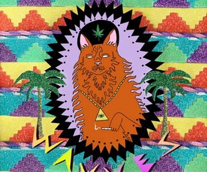 wavves, weed, and cat image