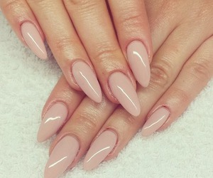 beige, fashion, and hands image