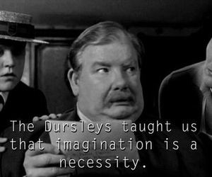 harry potter and the dursleys image