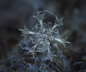 snowflake, snow, and winter image