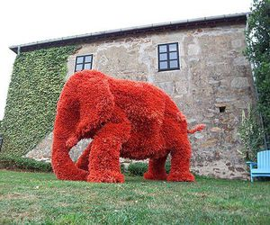 elephant, martin diez, and garden red image