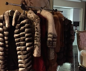 fur and luxury image