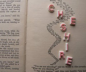 lettering, pink, and words image