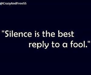 quotes, fool, and silence image