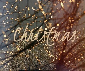 christmas, decoration, and festival image