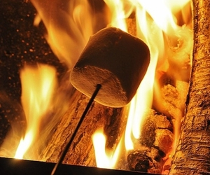 marshmallow and fire image
