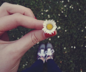 flowers, daisy, and girl image