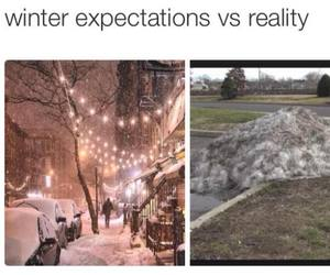 true, winter, and funny image