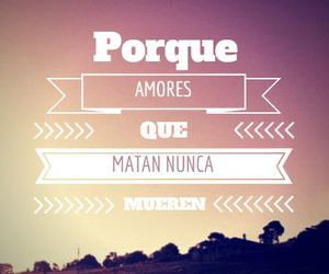 amores, frases, and sabina image