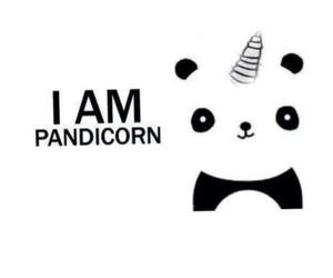 panda and yournecorn image