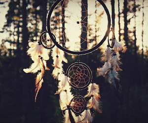 dreamcatcher, forest, and sunset image