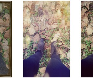 autumn, tree, and boots image