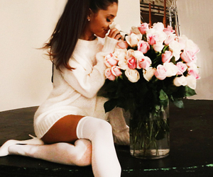 rose, roses, and ariana image
