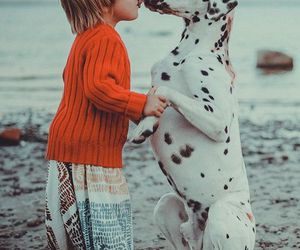 dog, child, and kids image