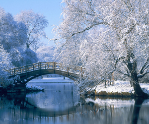 winter, snow, and bridge image