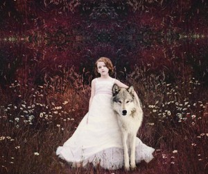animal, beautiful, and fairy tale image