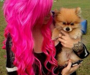 hair, pink, and puppy image