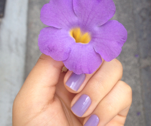 flower, matching, and nails image