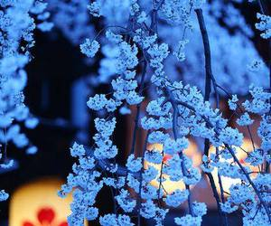 flowers, blue, and japan image