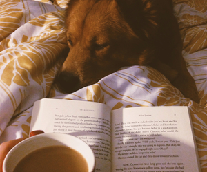 book, relaxing, and coffee image