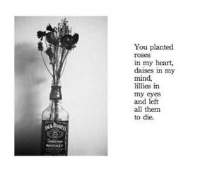flowers, poem, and sad image