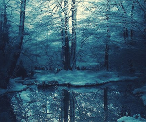 forest, blue, and snow image