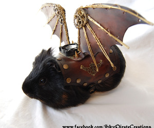 guinea pig, steampunk, and wings image