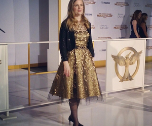 suzanne collins, the hunger games, and mockingjay image