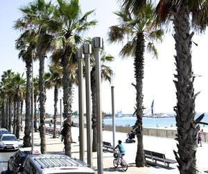 Barcelona, palms, and photography image