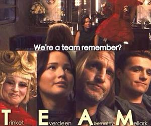 team, effie, and katniss image