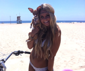 beach, chihuahua, and sexy image
