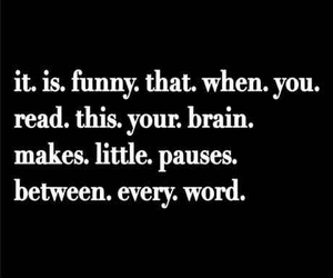 funny, brain, and word image
