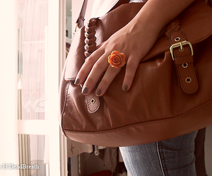 bags, chanel, and ring image