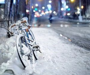 snow, winter, and bike image
