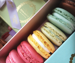 macaroons, macarons, and food image