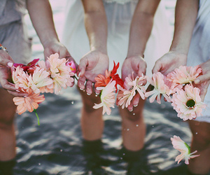 flowers, water, and friends image