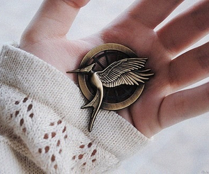 hunger games, the hunger games, and mockingjay image