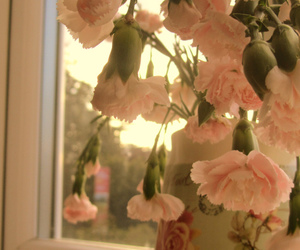 british, morning, and flowers image