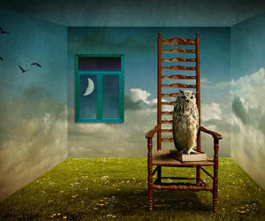 owl, art, and chair image