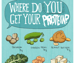 protein, food, and vegan image